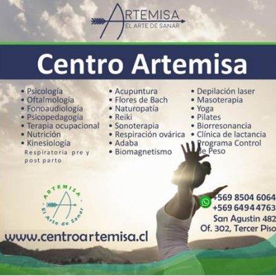 ACADEMIA ARTEMISA